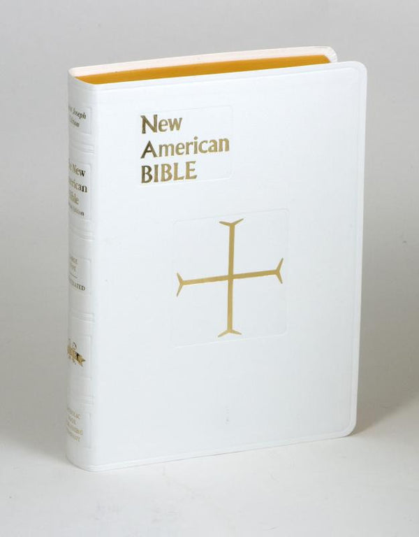 St Joseph New American Bible - Imitation Leather Edition