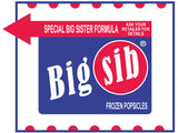 Big Brother / Big Sister Shirt - Retro Ice Cream Design
