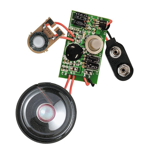 RadioShack 9V Digital Voice Recording Module