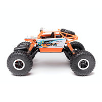 LiteHawk LIL' TOM Mini RC Truck