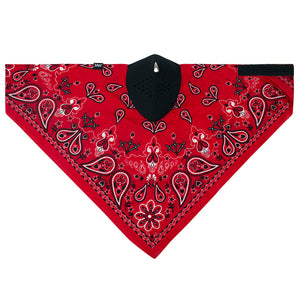 NEODANNA Mask- Cotton/Neoprene- Red Paisley