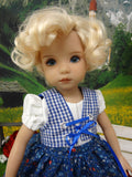 Bavarian Wildflowers - dirndl ensemble with tights & boots for Little Darling Doll or 33cm BJD