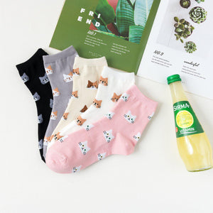 Kitty Cat Pattern Women's Ankle Socks - 5 Pairs Pack / Women's Shoe Size 5-10 - UPKIWI