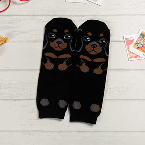 Cartoon Dog Breed Socks - Dachshund / Women's Shoe Size 5-10 - UPKIWI