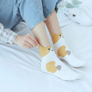 Funny Cat Women's Low Cut Socks - - UPKIWI
