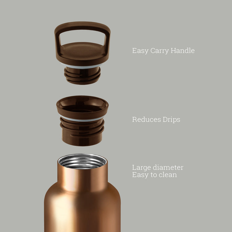 Bronze Gold-Cloudy Grey 20 Oz, HYDY - Water bottles, 18/8 (304) Stainless Steel, BPA Free, Reusable