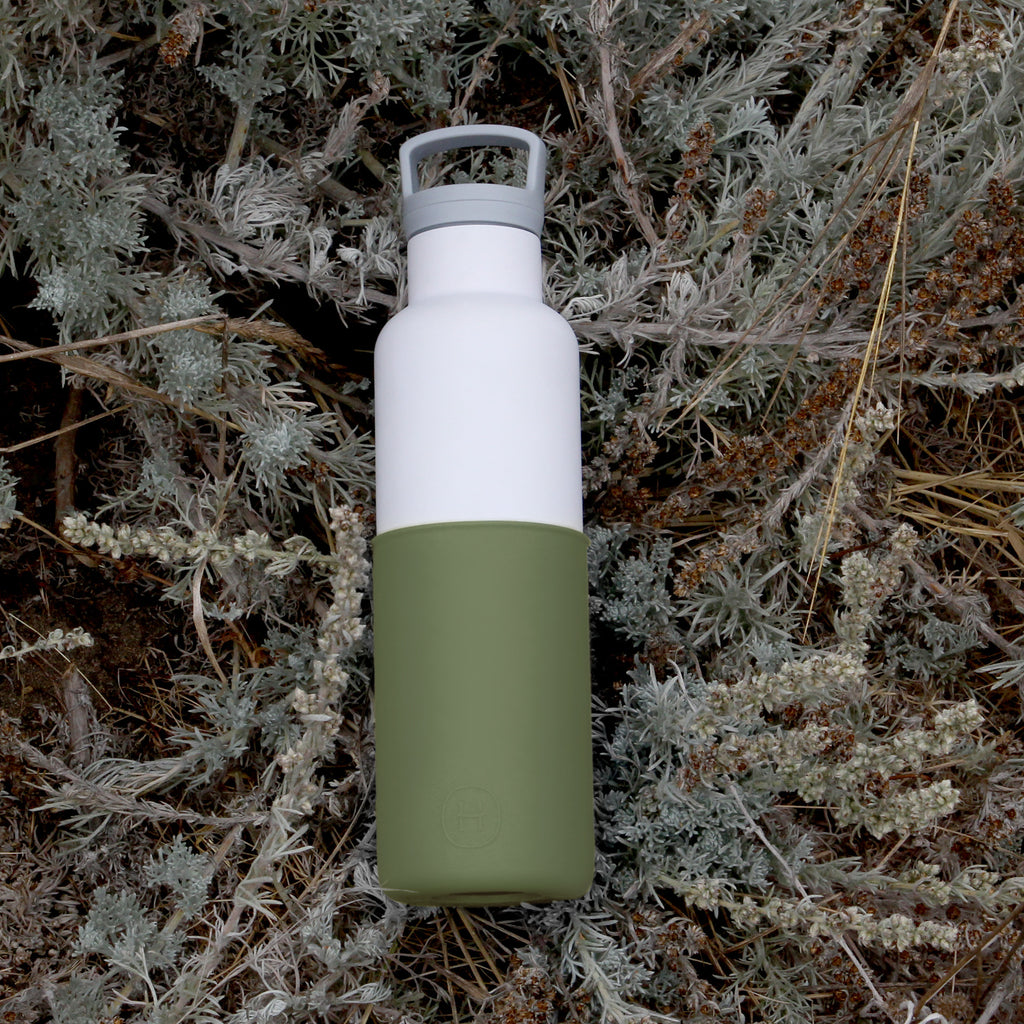 White-Seaweed Green 20 Oz, HYDY - Water bottles, 18/8 (304) Stainless Steel, BPA Free, Reusable
