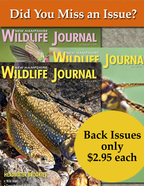 Back issues of NH Wildlife Journal Magazine