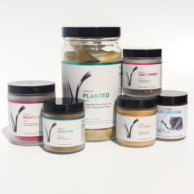 VitalFit Pantry Set