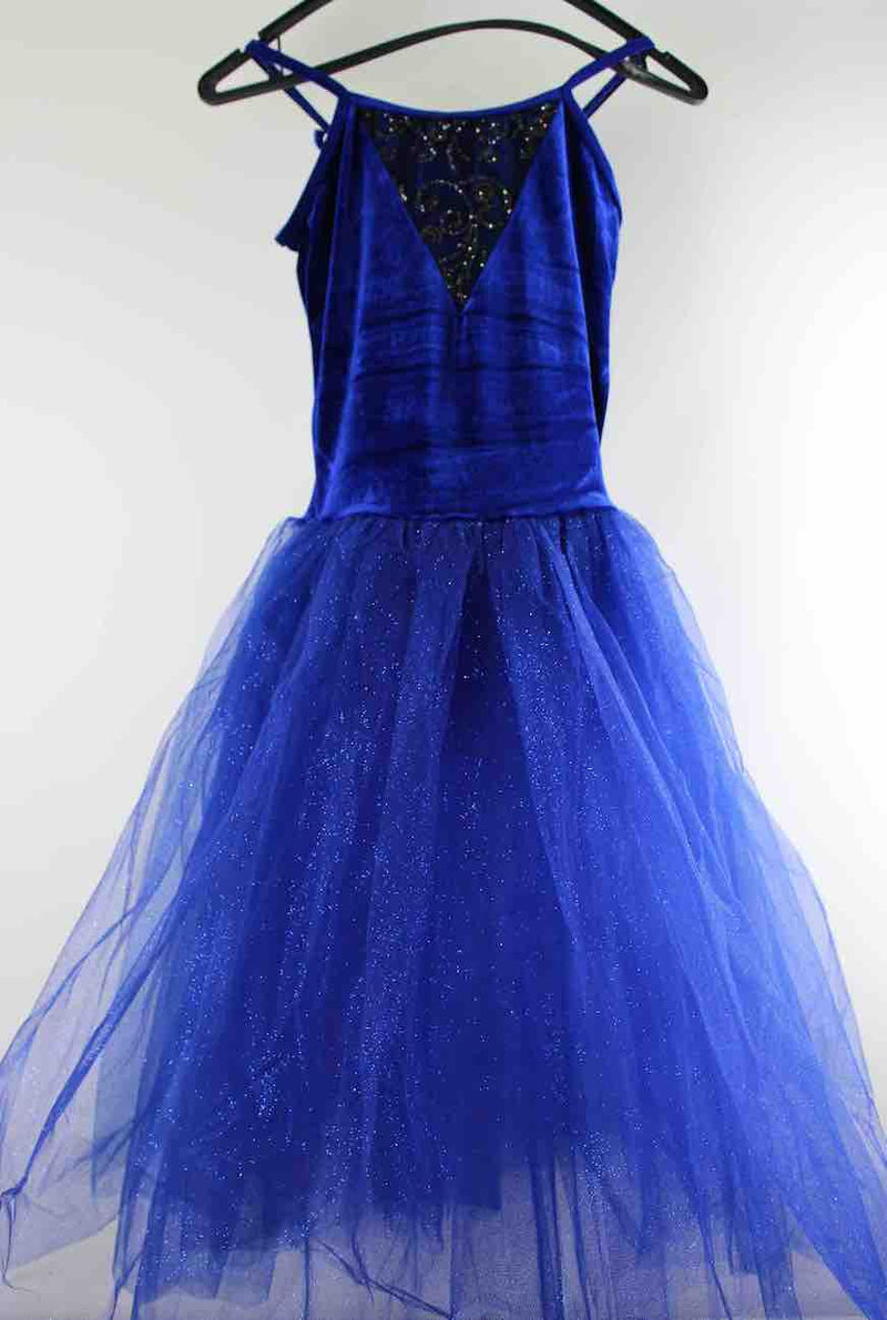 Adult Sized Blue Romantic Style Tutu With Sparkle Effect And Tiara