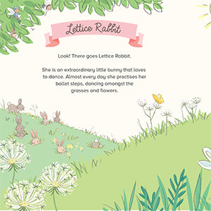 lettice rabbit ballet practice book by mandy stanley ballet book for girls