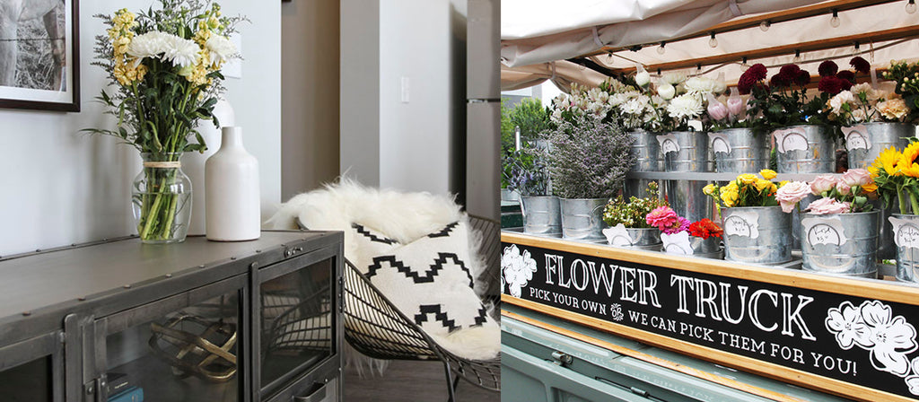 Local Decor to Liven Up Your Living Space  |  Lifestyle Communities