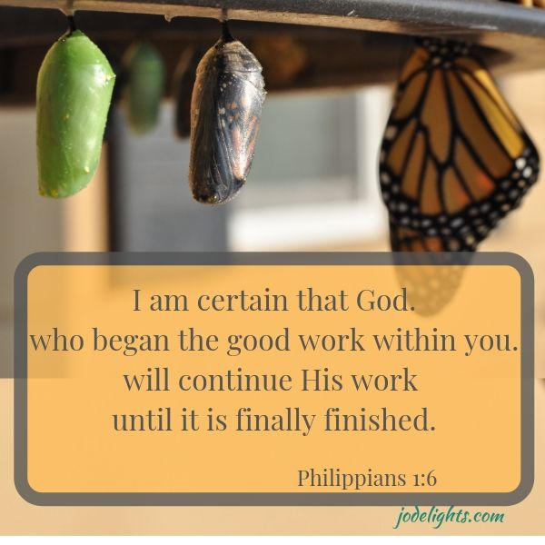 cocoon into butterfly Philippians 1:6