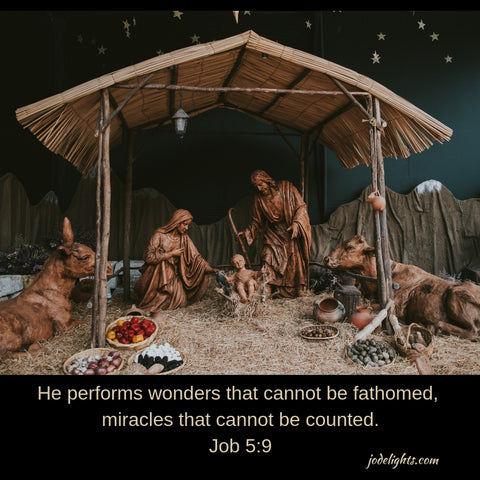 Nativity Wonder