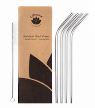 metal straws in plastic free packaging cardboard zero waste box with cleaning brush