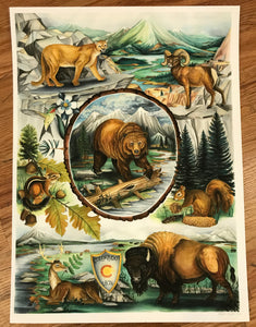 Colorado 1876 LTD prints - Matt Scanlan