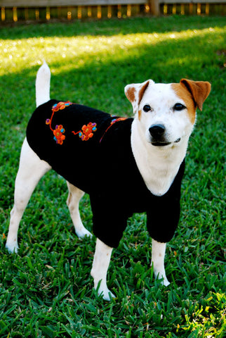 Black Magic Dress Dog Sweater