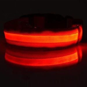 LED Safety Dog Collar