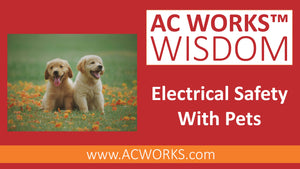 AC WORKS™ Wisdom: Electrical Safety With Pets