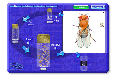Software Educativo Newbyte: Laboratorio de Genetica de Drosophila - AlmacenEducativo.com