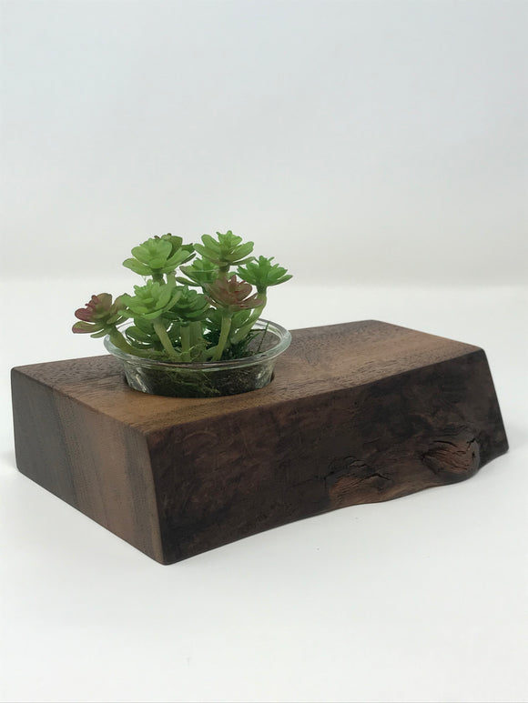 Walnut Desk Top Plant Holder
