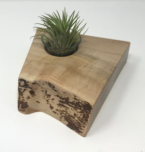 Maple Desk Top Plant Holder