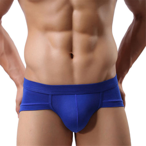 New Trunks Sexy Underwear Men Men's Boxer Shorts Bulge Pouch soft Underpants Sexy Low Waist 5 Colors  High Quality - The Big Boy Store