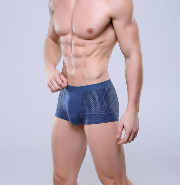 Breathable Mesh Silk Men's Boxer Mens Bodysuit Underwear blue