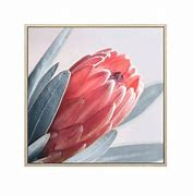 PELLY PROTEA CANVAS