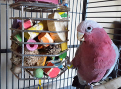 Stuff household items into treat cages