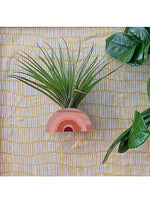 Goodsmith Gift Rainbow Air Plant Magnet in Pink/Maroon Valia Honolulu