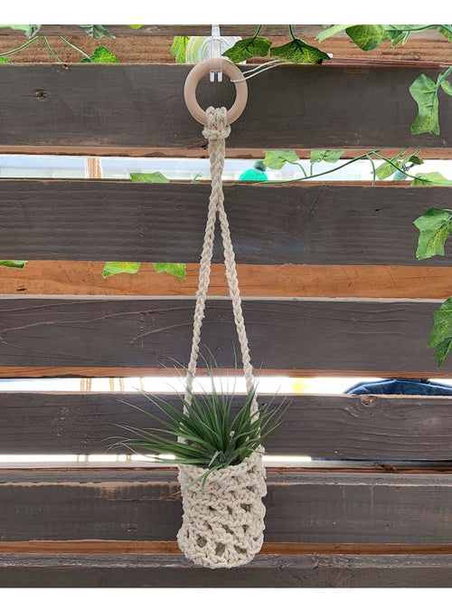 Soul of the Party Home Macrame Sac Planter Valia Honolulu