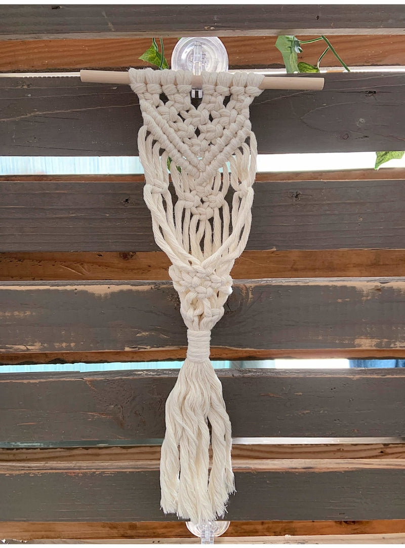 Valia Honolulu Home Macrame Air Plant Hanger in Soft Natural Valia Honolulu