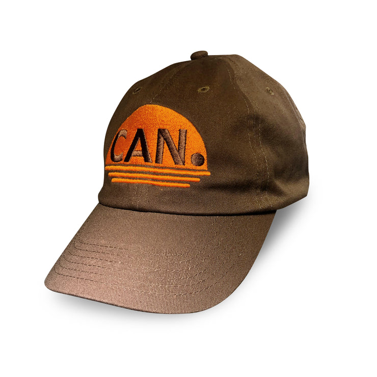 women's brown hat