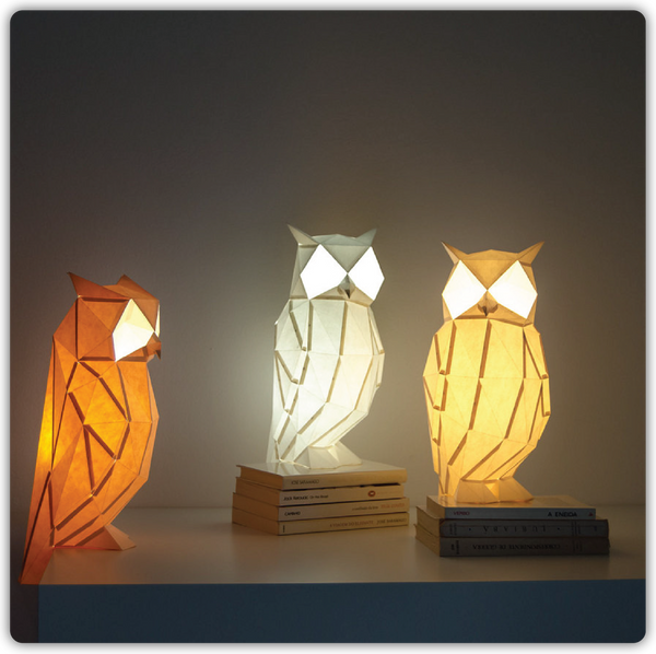 DIY Color Paperlamp - Night Owl - ModiDen