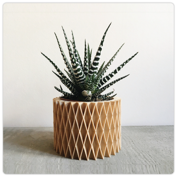 3D Printed Minimalist Geometric Wood Planter - ModiDen