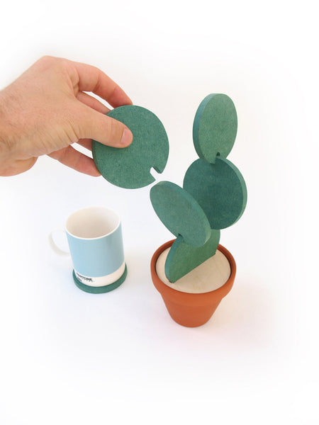 Unique Cacti Coasters - ModiDen