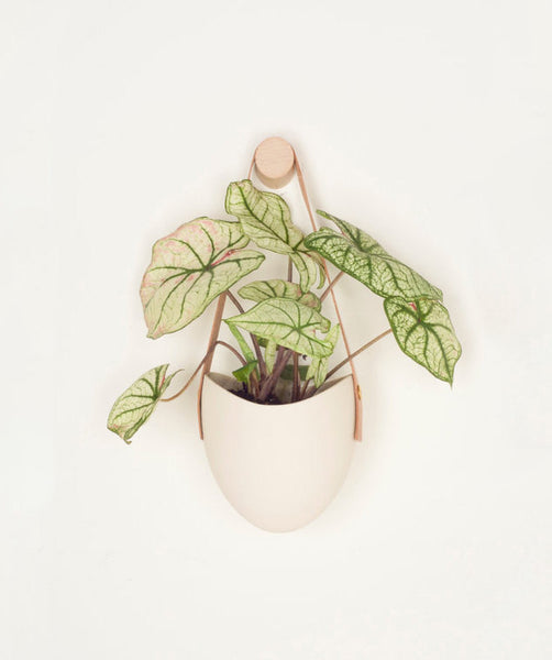 Leather and Porcelain Hangning Planter - ModiDen