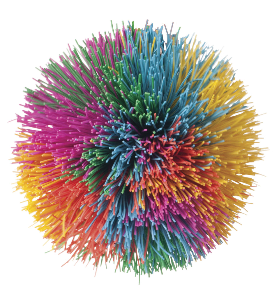 Rainbow Pom Ball Toysmith Special Needs Essentials