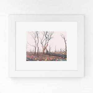 Beauty from Ashes - Breakthrough Print
