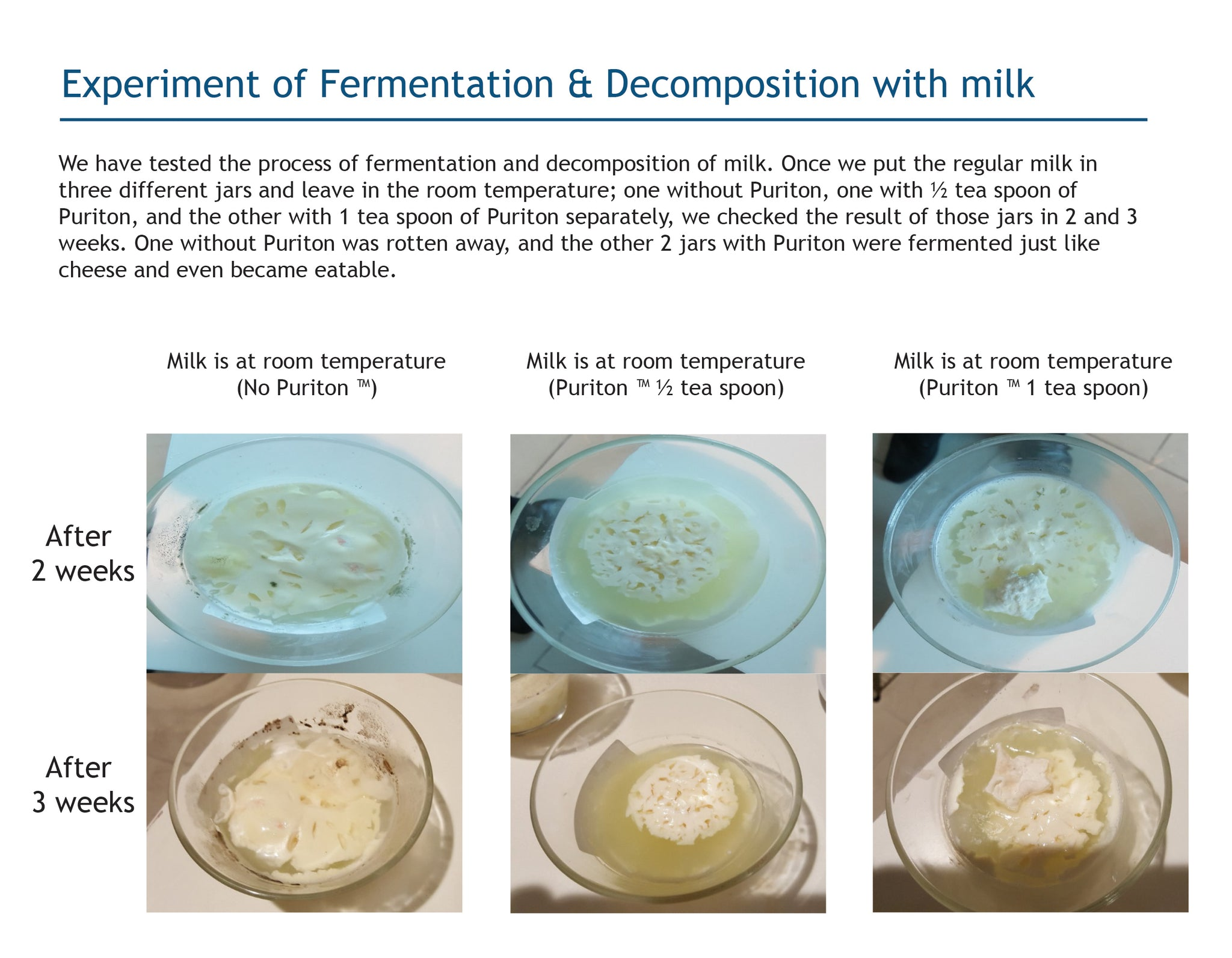 Puriton Mineral water experiment of fermantation and decomposition with milk