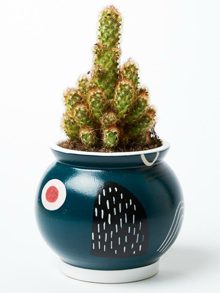 Magic Mountain Pot | Teal