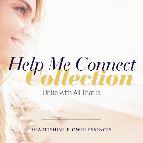 Help Me Connect Collection