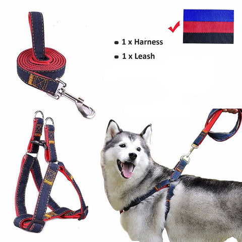 Puppy Dog Harnesses Lead Set Strong Leash Dog Collar