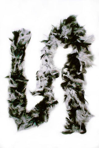 Feather Boa w/ sparkles, Black & White