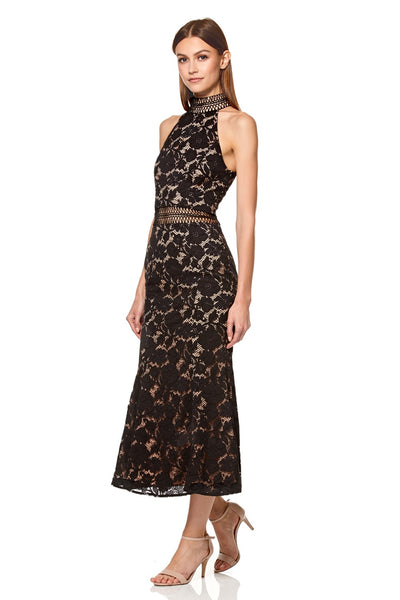 Audrey High Neck All Over Lace Midi Dress