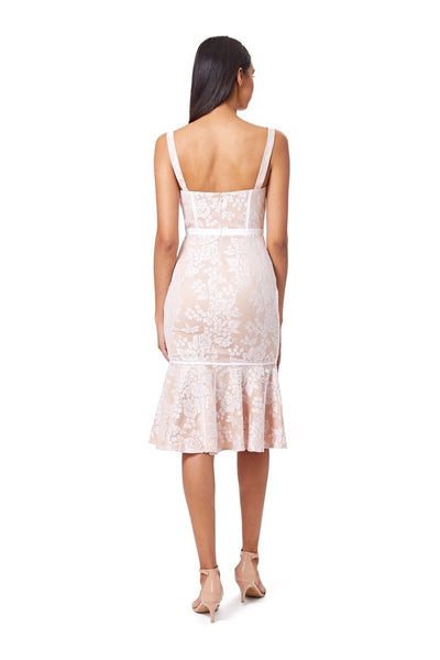 Truth All Over Lace Panel Detail Midi Dress