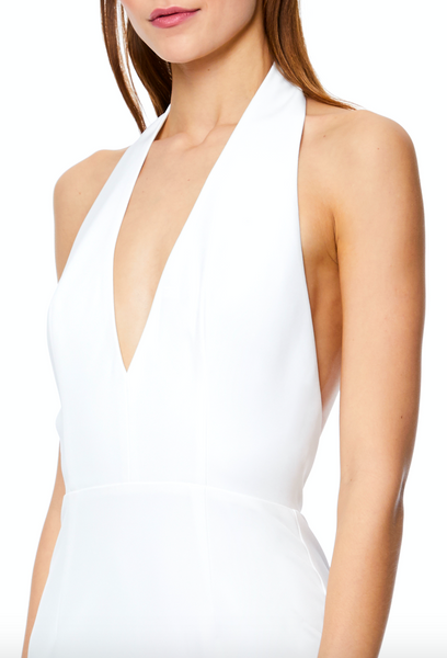 Kendall Extreme Plunge Maxi Dress with Drop Back