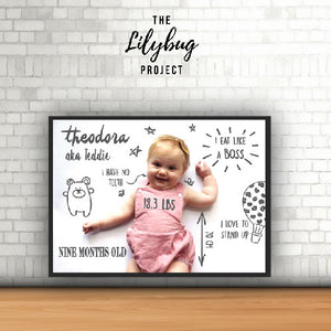 The Lilybug Project - The Lilybug Project