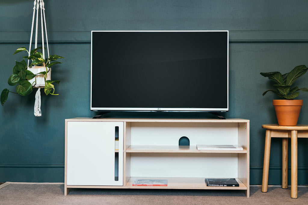 Media unit with indoor plants
